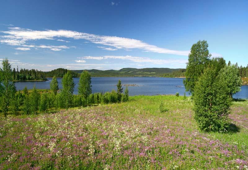 Skandinavische Prärie