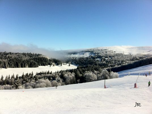 Skiez, Skions