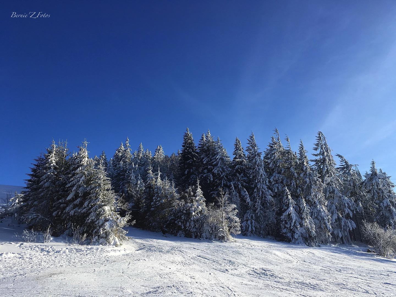 skiez Vosges 2