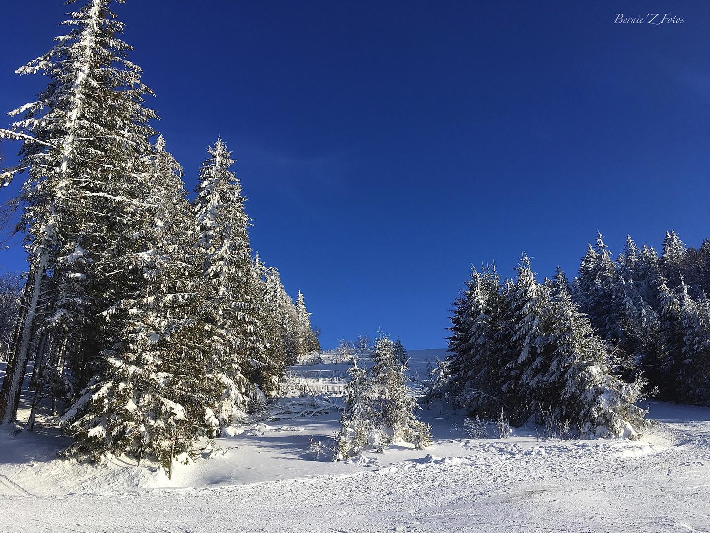Skiez Vosges
