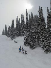 Skiing³