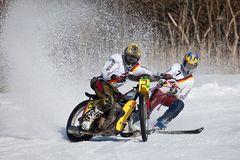 Skijöring des AMC Penzberg