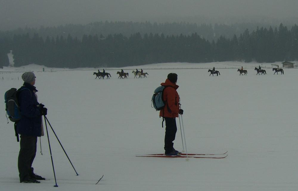 Skilangläufer treffen auf Reiter