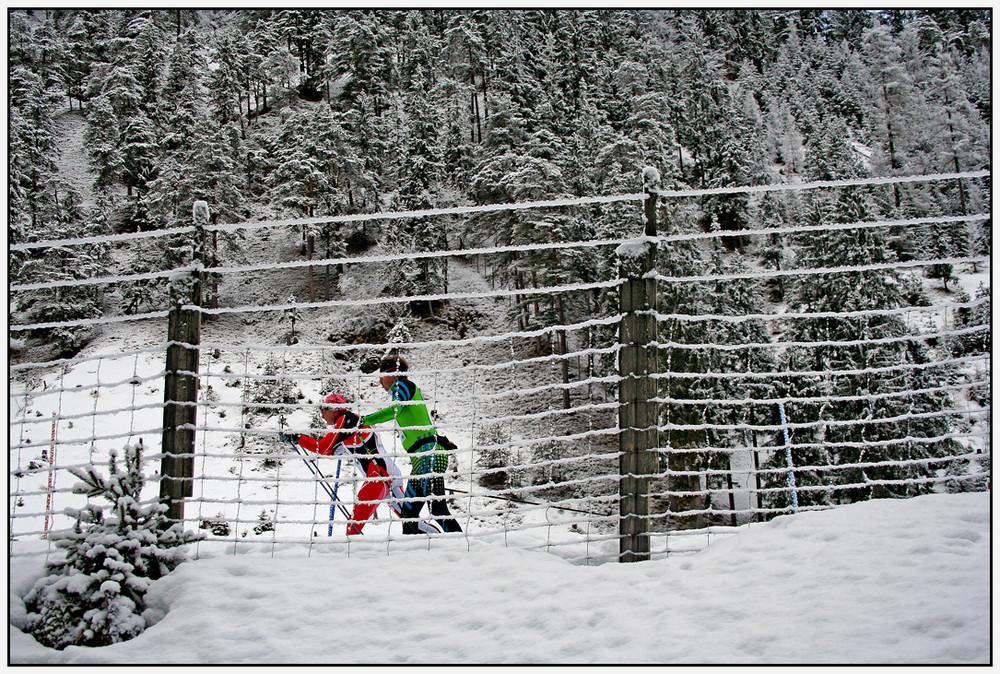 Skilanglauf am idyllischen Achensee