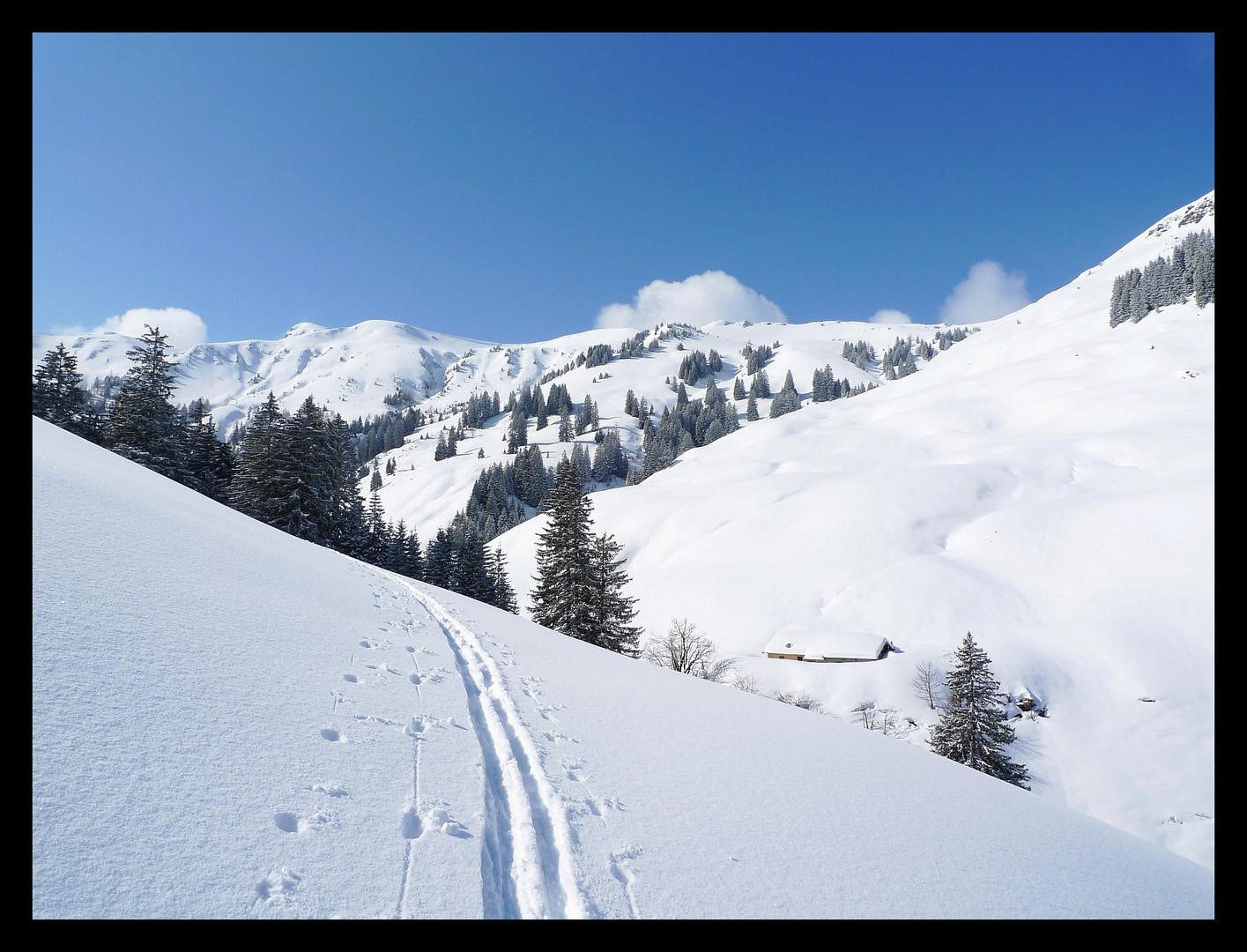 Skitour bei Maria Alm