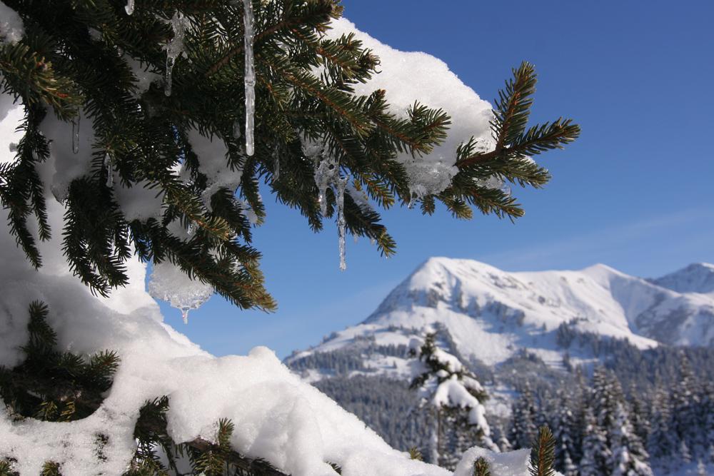 Skitour Lechtal