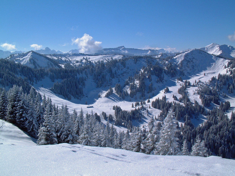 Skitour zum Riedberger Horn übers Siggiswanger Horn mit Blick zum Hohen Ifen