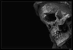 .... Skull ....