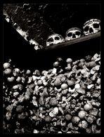 ...skull and bones...