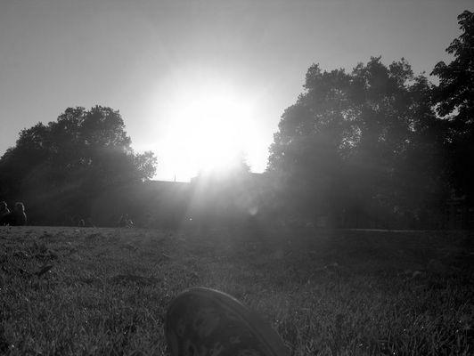 Skulls and the Sun
