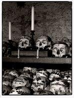...skulls...