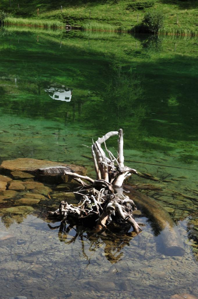 Skulptur und Auto im See
