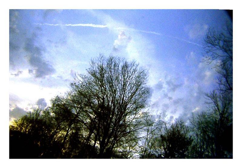 -sky-