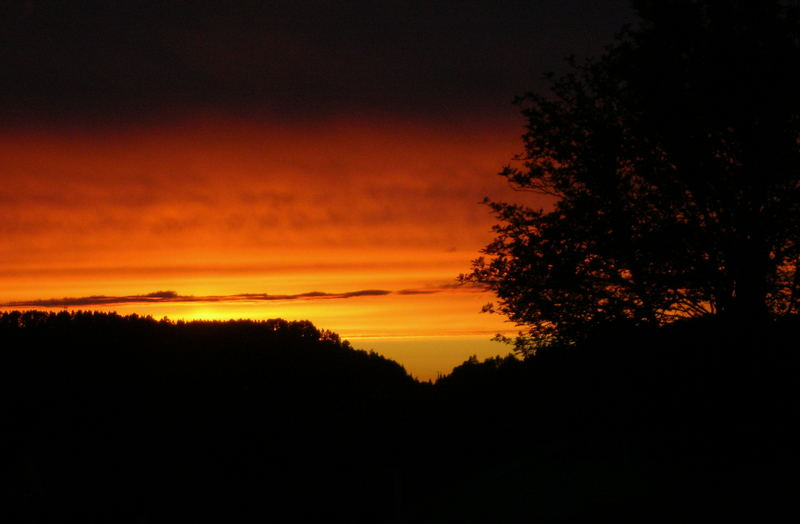 Sky in fire