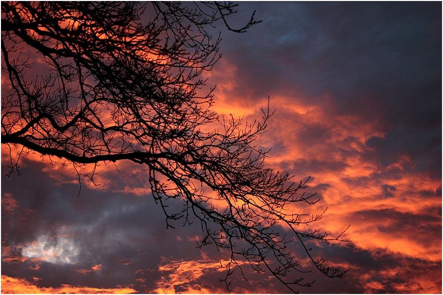 sky 'n colour