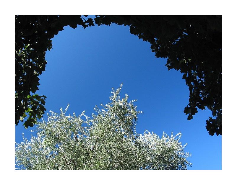 Sky of Blue