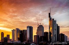 Skyline Frankfurt mit Abendrot