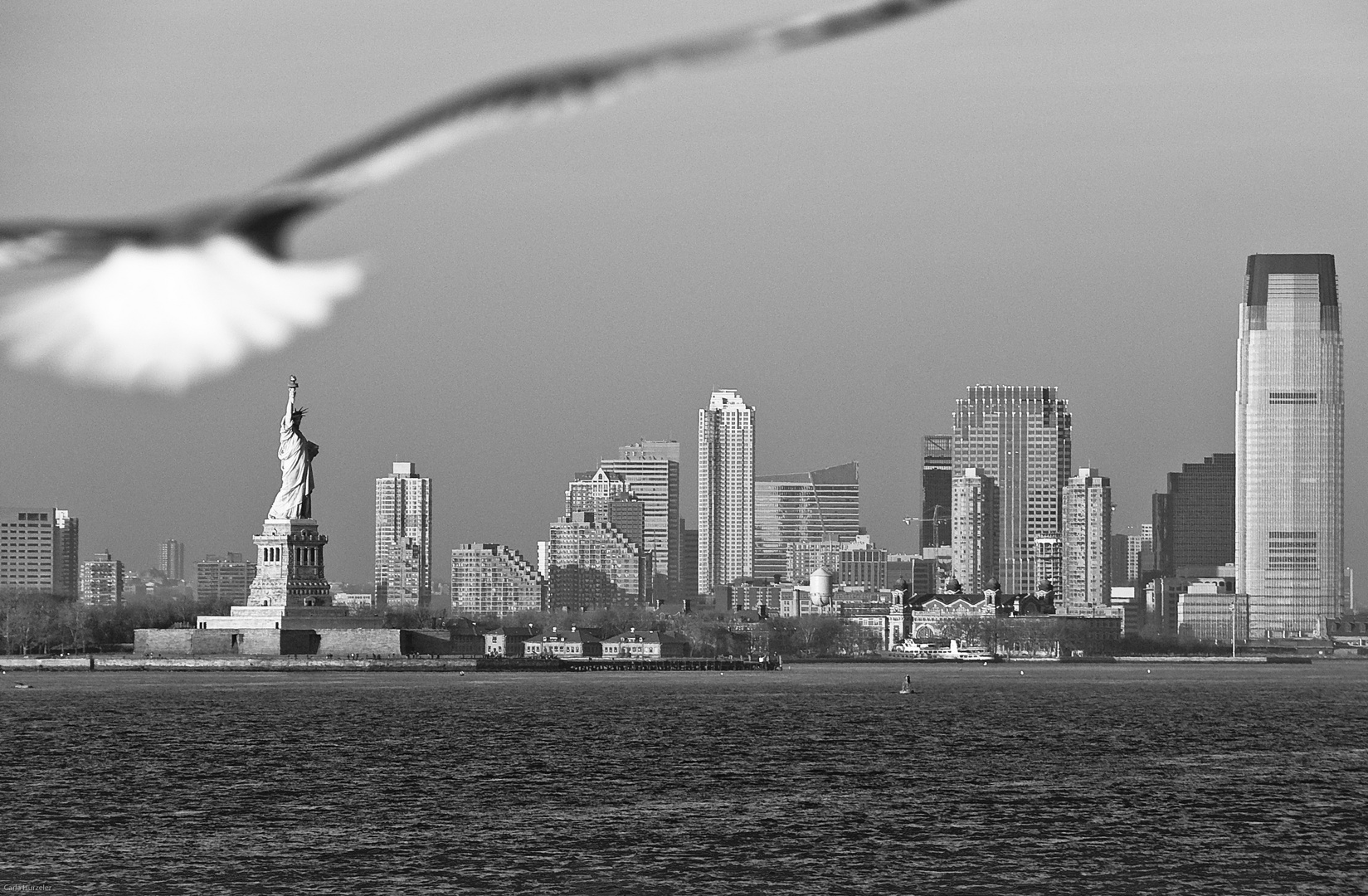 Skyline with Lady Liberty