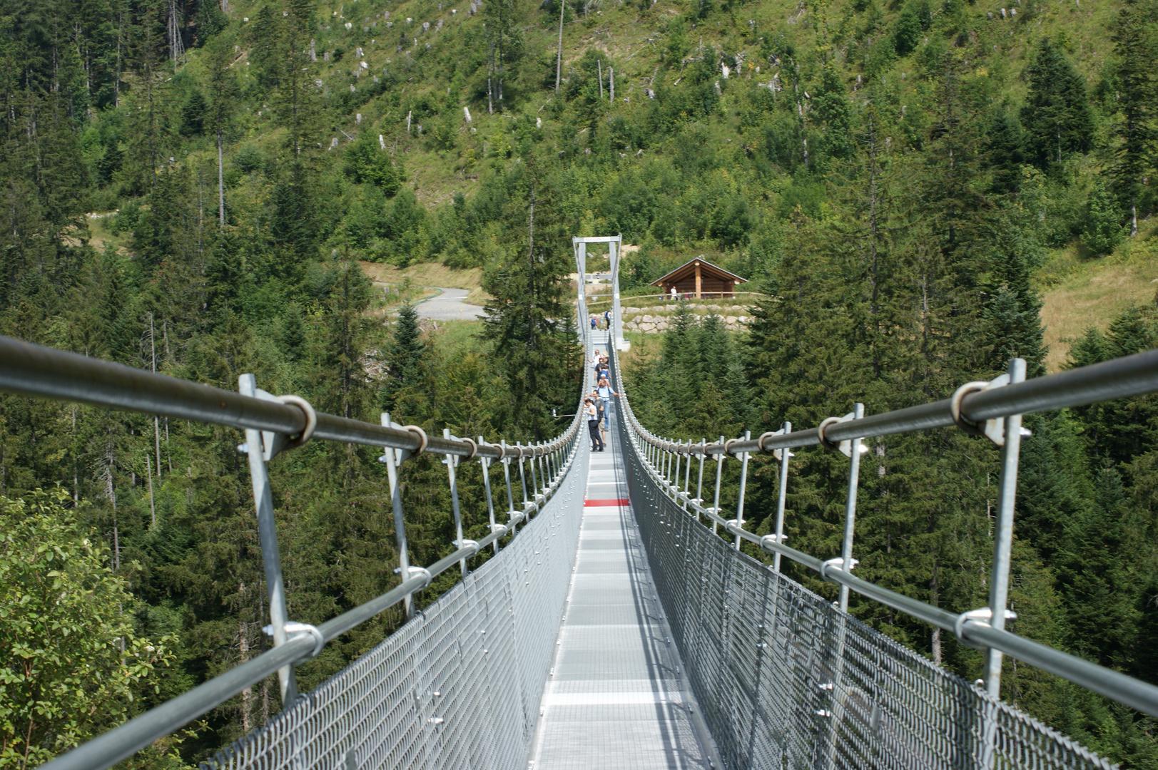 Skywalk Hängebrücke Hochstuckli