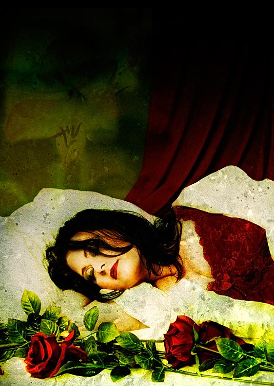 ***sleeping beauty***