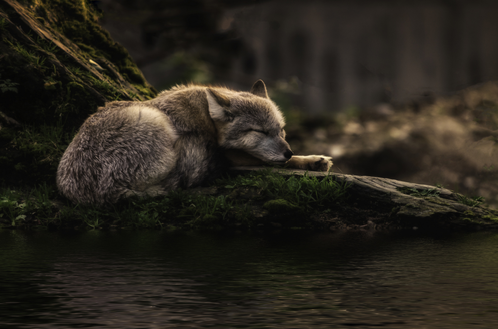 sleeping where the waters flow