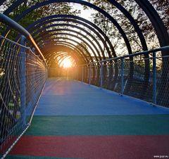 Slinky - Der Sonne entgegen