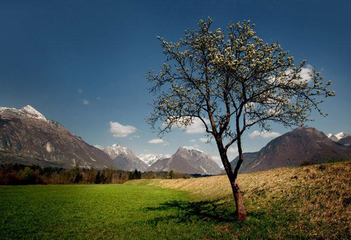 Slovene country 3