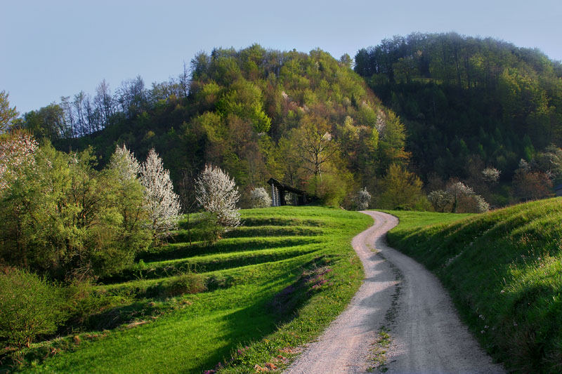 Slovene country 5