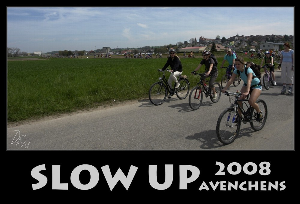 Slow up Murtensee 2008