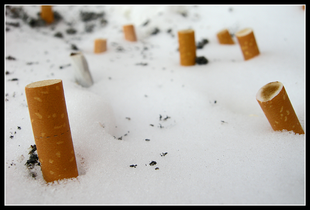 smokin' in a winter wonderland