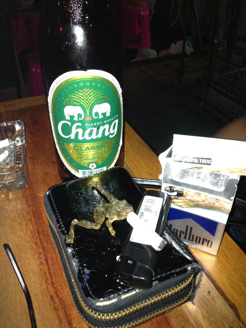 smoking frog in Bangkok