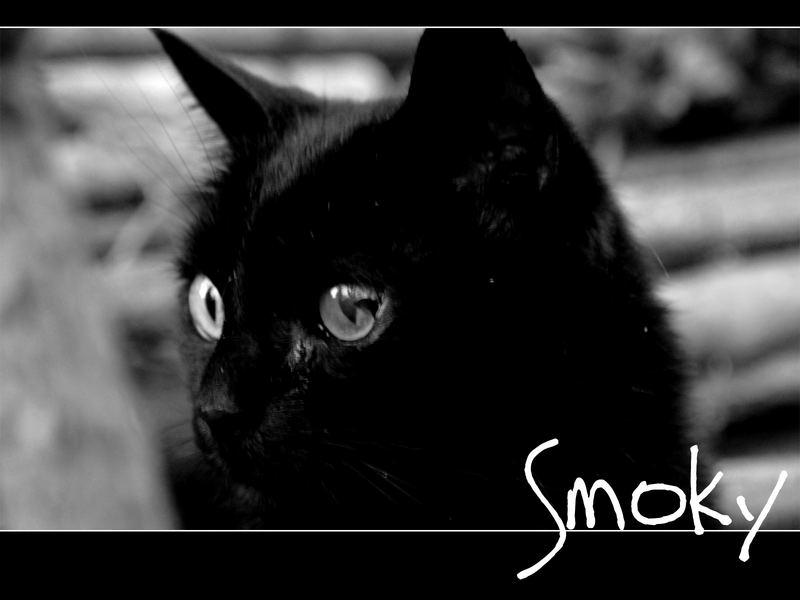 Smoky B/W