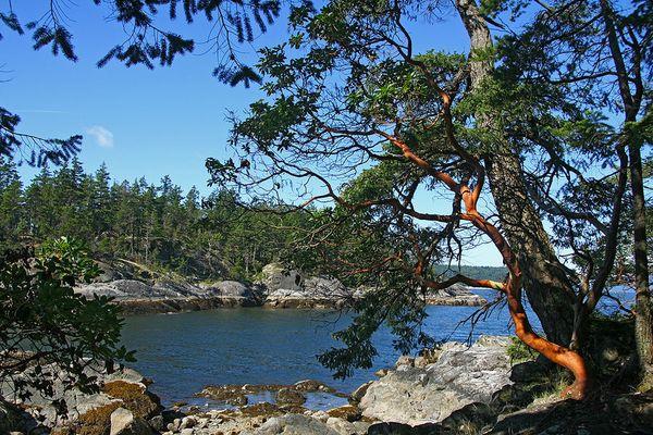Smuggler Cove, Sunshine Coast BC