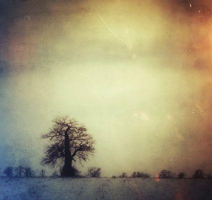 Snapseed-Winter (1)