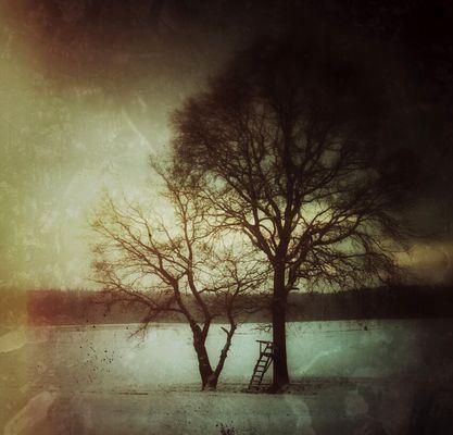 Snapseed-Winter (2)