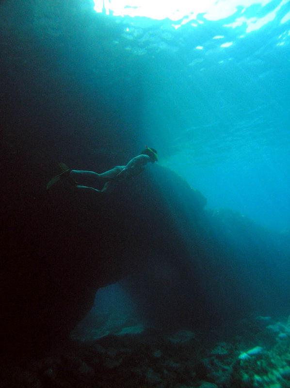 snorkeling paxos