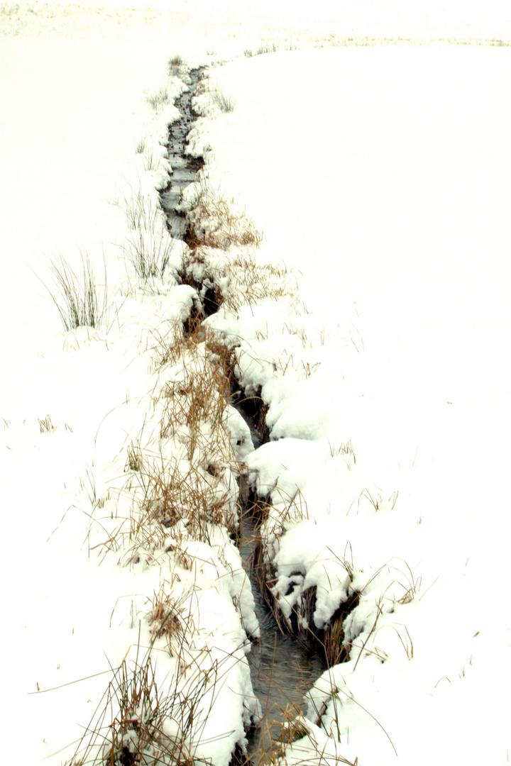 snow#