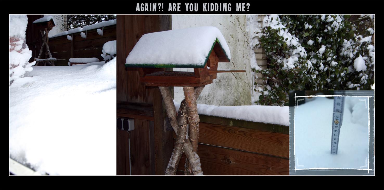 Snow. Again?!