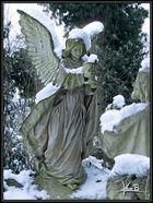snow-angel.