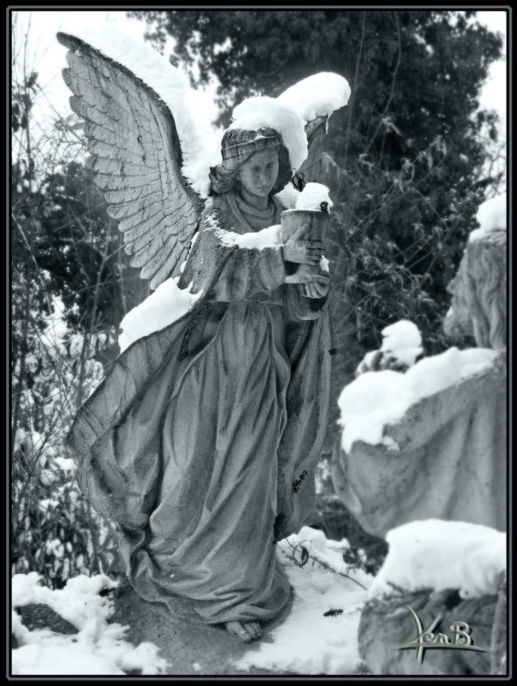 snow-angel. sw