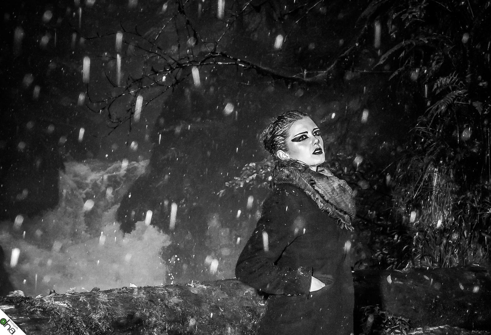 Snow is fallen