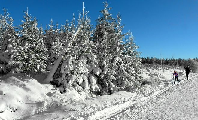Snow paradise (1)