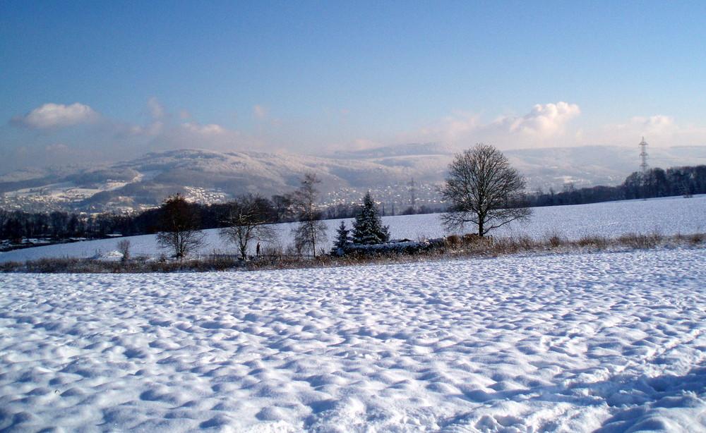 snowdream 6