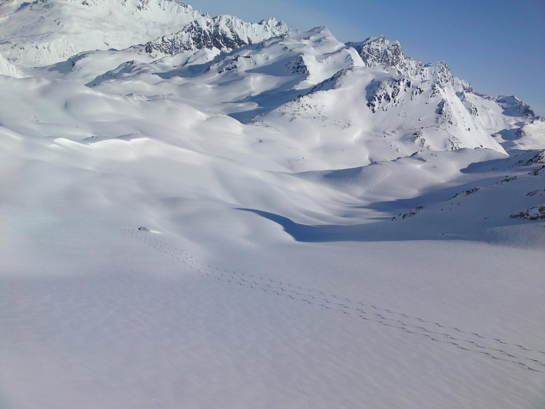 Snowlines