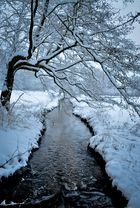 Snowy view.....