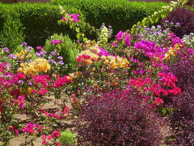 So Bund kann ein Garten sein.