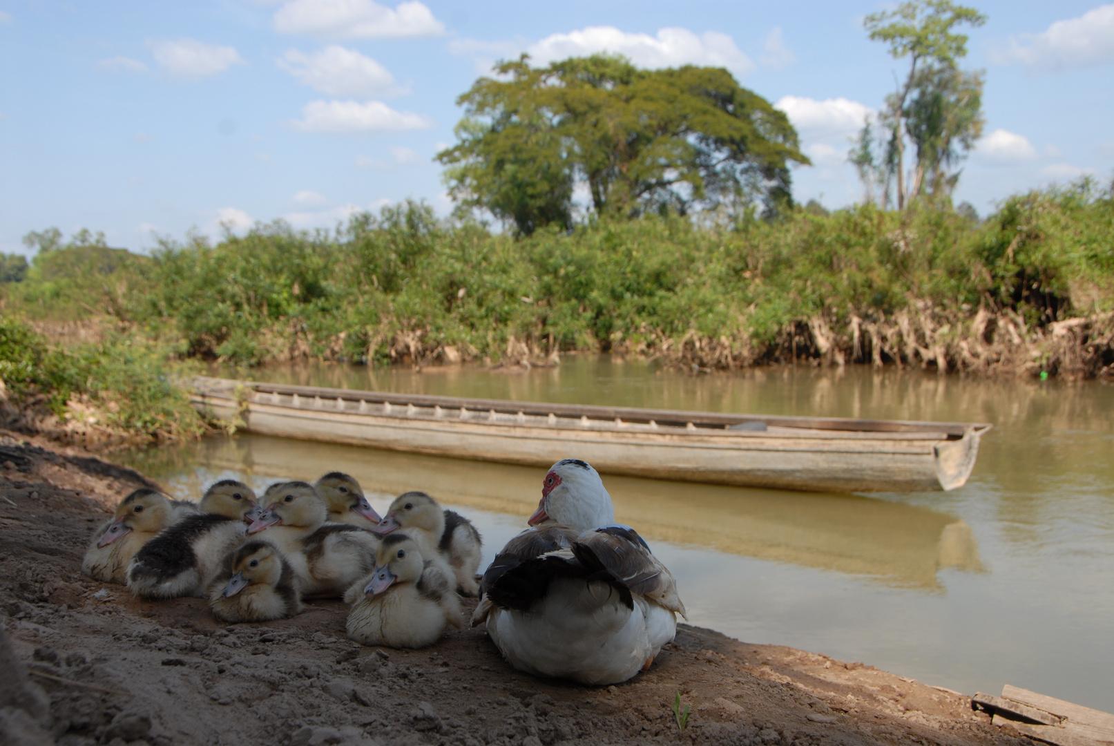 ...so friedlich ist es in Laos