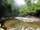 """So ging es auf dem  """"little Amazonas"""" durch den Mangroven Wald."""