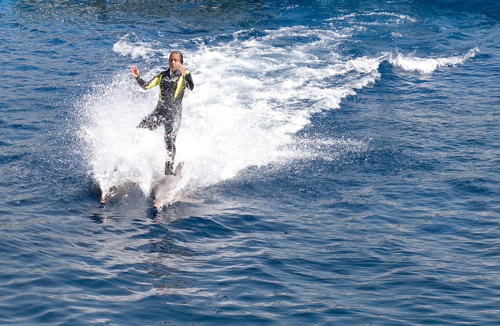 So kann man auch Wasserski fahren