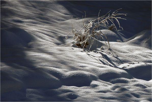 so muß der Winter sein (2)